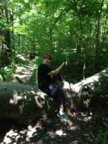 Deb on trail with tree.jpg